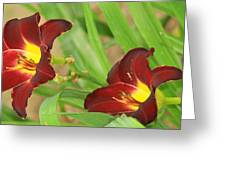 Lilly2 Greeting Card
