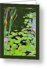 Lillypads And Cattails Greeting Card