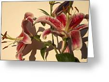 Lily-1 Greeting Card