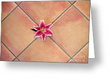 Lily Alone On Tile Greeting Card