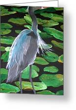Lily And Egret Greeting Card