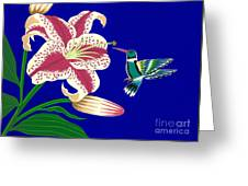 Lily And Hummingbird Greeting Card
