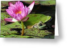 Lily And The Bullfrog Greeting Card
