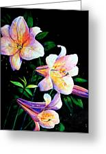 Lily Fiesta Greeting Card