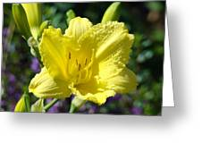 Lily Flower Art Print Canvas Yellow Lilies Baslee Troutman Greeting Card