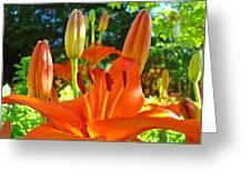 Lily Flowers Garden Art Prints Orange Lilies Floral Baslee Troutman Greeting Card