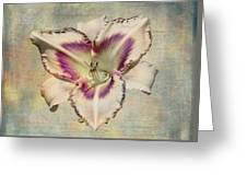 Lily For A Day Greeting Card