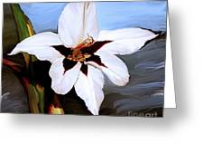Lily I Greeting Card