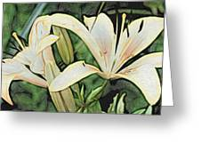Lily - Id 16217-152054-3169 Greeting Card