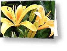 Lily - Id 16217-152100-9584 Greeting Card