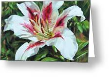 Lily Impression Greeting Card