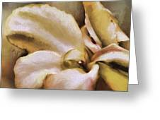 Lily In The Garden Neutral Greeting Card