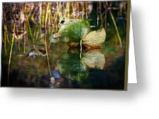 Lily Pad Reflection Oil Greeting Card
