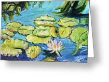 Lily Pads Mo Botanical Garden I Greeting Card