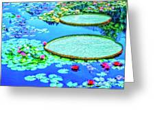 Lily Pond 2 Greeting Card