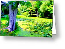 Lily Pond #5 Greeting Card
