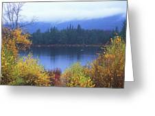 Lily Pond Autumn Kancamagus Highway Greeting Card