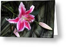 Lily Stem On Green Brocade Greeting Card