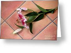 Lily Stem On Tile Greeting Card