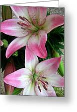 Lily Times Two Greeting Card