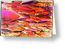 Crimson Lilypads Floating.. Greeting Card