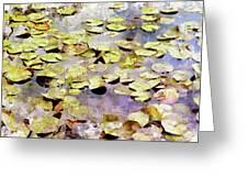 Lilypads W C Greeting Card