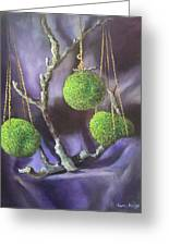 Lime And Violet In Harmony Greeting Card