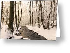 Limentra In Winter Greeting Card