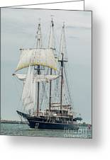 Limited Sails Greeting Card