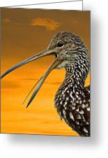 Limpkin At Sunset Greeting Card
