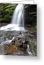 Lin Camp Branch Waterfall Monongahela National Forest Greeting Card