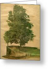 Linden Tree On A Bastion 1494 Greeting Card