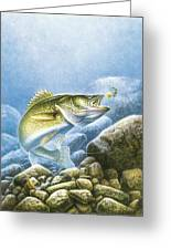Lindy Walleye Greeting Card by JQ Licensing