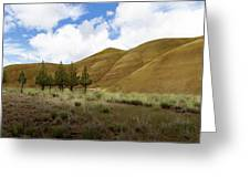 Line Of Trees At Painted Hills Greeting Card