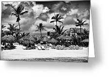 Lined Up At Punta Cana Greeting Card by John Rizzuto