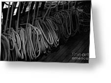 Lines Bw Greeting Card
