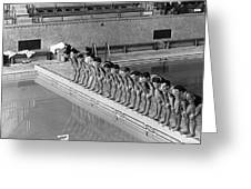 Lineup Of Ncaa Men Swimmers Greeting Card