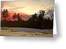 Lingering Winter Greeting Card