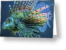 Lion Fish Greeting Card