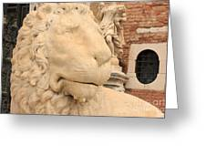 Lion Head In Venice Greeting Card