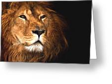 Lion Head Oil Painting Greeting Card