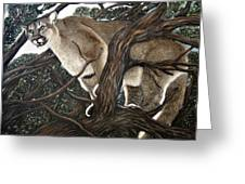 Lion In The Tree Greeting Card