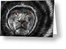 Lion Lady   -3 Greeting Card