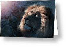 Lion Light Greeting Card by Bill Stephens