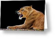 Lion On Black Greeting Card