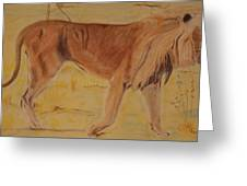 Lion On The Plain Greeting Card