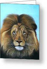 Lion - The Majesty Greeting Card