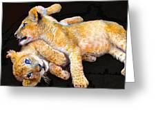 Lion Wrestling Greeting Card