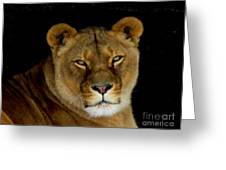 Lioness. No.2 Greeting Card