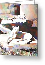 Lionesses At Zoo Greeting Card